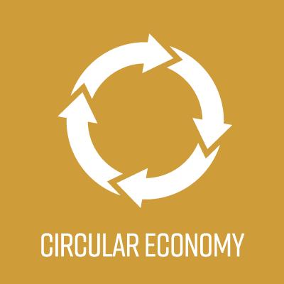 circular economy icon